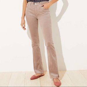 LOFT Ann Taylor tan modern sexy bootcut corduroy